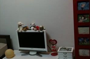 テレビと本棚