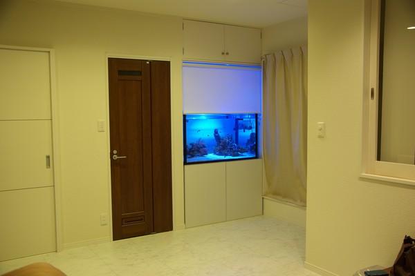 サカナノート 部屋に小型水槽のある暮らし。