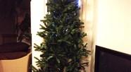 7Ftのクリスマスツリー