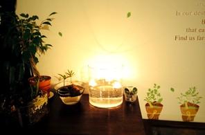 植物とフローティングキャンドル