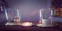 ドームガラス